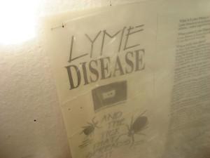 Lyme Disease Flyer